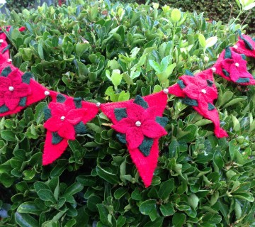 Knitted Poinsettia Bunting With Silver Beads